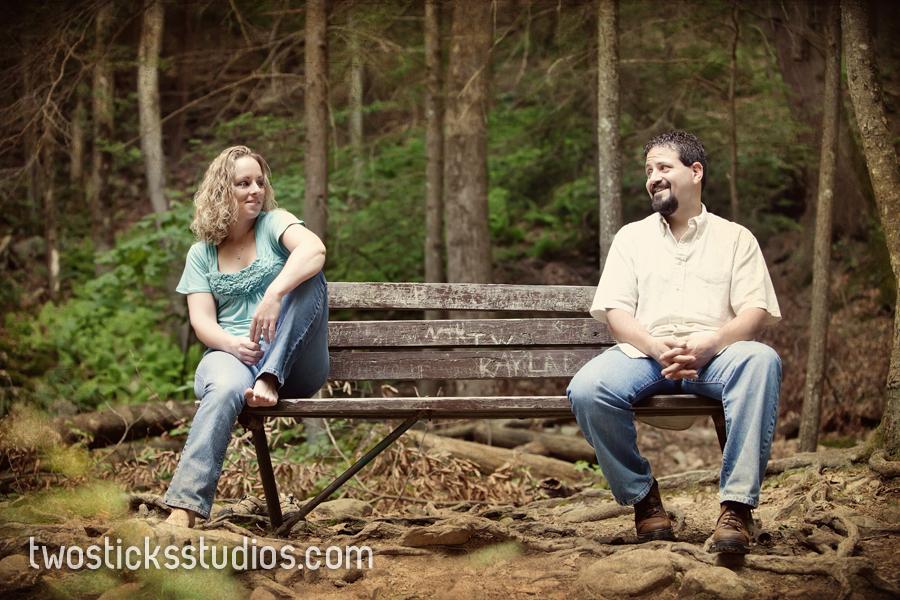 Erin And Pat Bushkill Falls Engagement Session