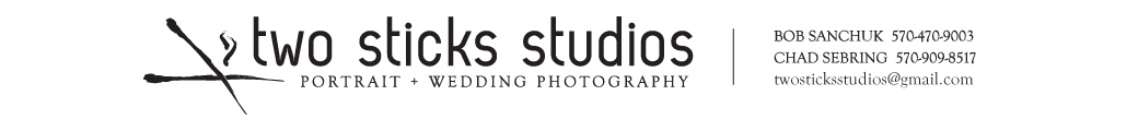 Two Sticks Studios – Scranton, Wilkes-Barre, Poconos Wedding Photographers logo